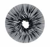 Anemone decorative bowl