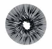 Anemone decorative bowl