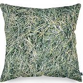 Foonka pillow filled with buckwheat husk 40 x 40 cm