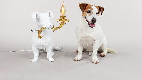 Rio Table lamp dog